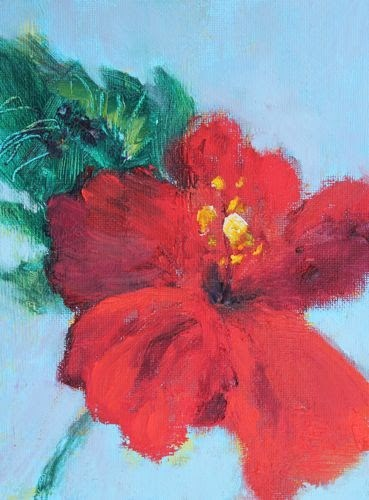 """Hibiscus, Contemporary Floral Paintings by Arizona Artist Amy Whitehouse"" original fine art by Amy Whitehouse"