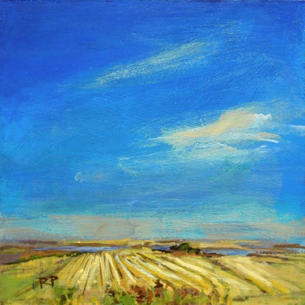 """Stubble Field"" original fine art by Robin Peterson"