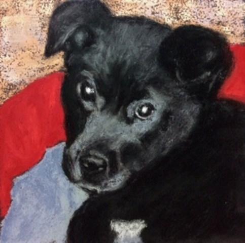 """""""Little Bear"""" original fine art by Marti Walker"""