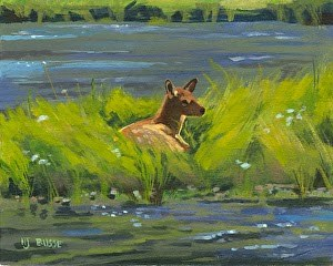 """Western Wildlife, Yellowstone Landscape Painting, Elk Calf Study by Nancee Jean Busse, Painter of"" original fine art by Nancee Busse"