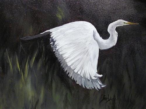"""""""Egret in Flight"""" original fine art by Barbara Haviland"""