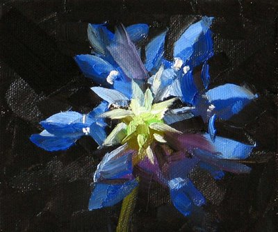 """Texas Bloom --- Sold"" original fine art by Qiang Huang"