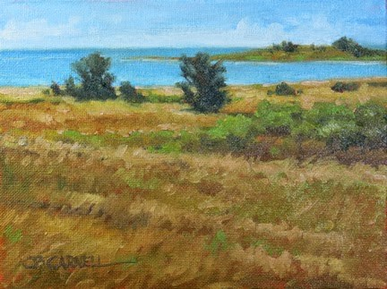 """'Sea Breezes' An Original Oil Painting by Claire Beadon Carnell 30 Paintings in 30 Days Challenge Da"" original fine art by Claire Beadon Carnell"