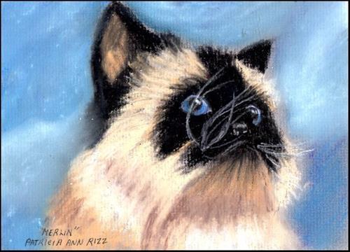 """""""My Precious Merlin"""" original fine art by Patricia Ann Rizzo"""