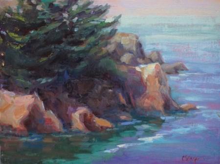 """""""Agate Cove"""" original fine art by Carol Myer"""