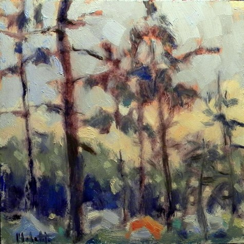 """campground in the pines sunset"" original fine art by Heidi Malott"