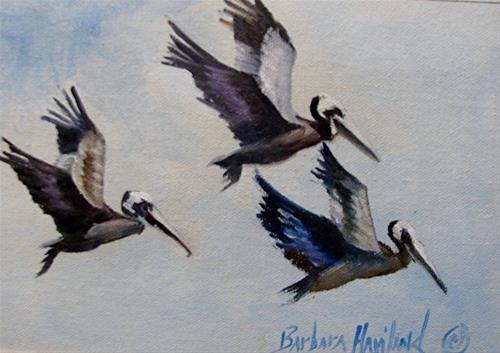 """Three Pelicans in Flight"" original fine art by Barbara Haviland"