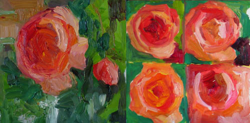 """Peach Rose Studies"" original fine art by Carol Steinberg"