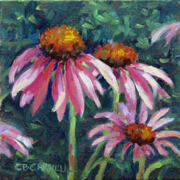"""CONEFLOWERS by Claire Beadon Carnell 100 Paintings in 100 Days Challenge 'Inspirations from a Back Yard'77/100"" original fine art by Claire Beadon Carnell"