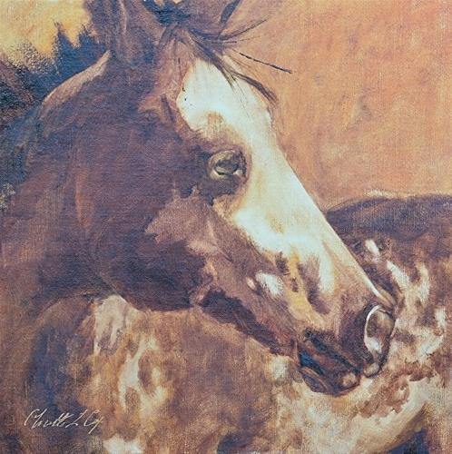 """Apaloosa Baby C14010"" original fine art by Charlotte Cox"