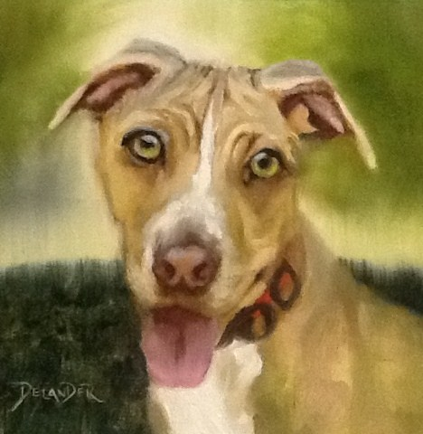 """Blaze, Animal Portrait"" original fine art by Diana Delander"