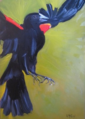 """Soft Landing, Redwing Blackbird, Linda McCoy"" original fine art by Linda McCoy"