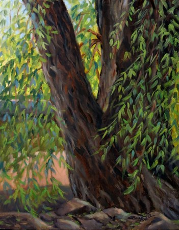 """'Weeping Willow' (Children's Lake, Boiling Springs, PA) An Original Plein Air Oil Painting by Claire"" original fine art by Claire Beadon Carnell"