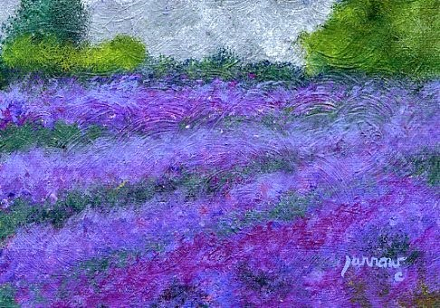 """ORIGINAL PAINTING OF EVERGREEN LAVENDER FARM IN APPOMATTOX, VA."" original fine art by Sue Furrow"