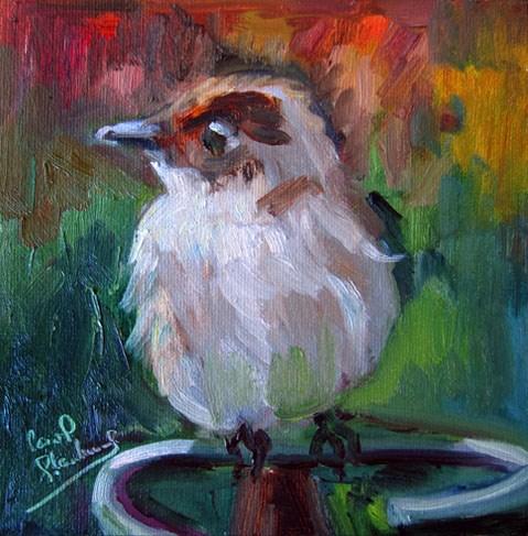"""Phoebe Bird/Spring Again"" original fine art by Carol Steinberg"