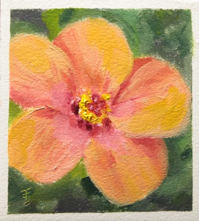 """Hibiscus Bloom"" original fine art by Jane Frederick"