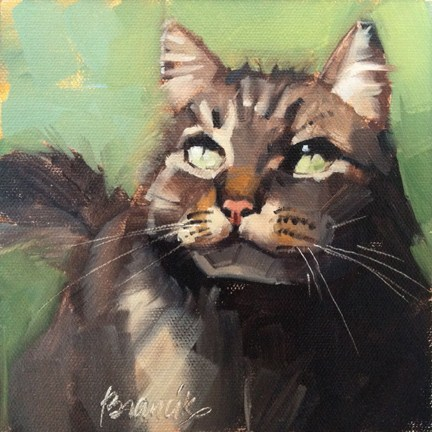 """Main Coon"" original fine art by Candace Brancik"