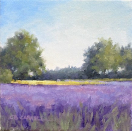 """SHADES OF LAVENDERAn Original Oil Painting  by Claire Beadon Carnell"" original fine art by Claire Beadon Carnell"
