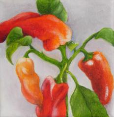"""Pepper Tree 1"" original fine art by Elaine Lynest"