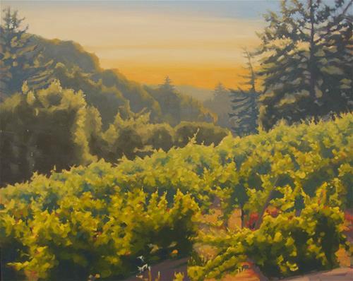 """""""Sunshine On The Vines"""" original fine art by John White"""
