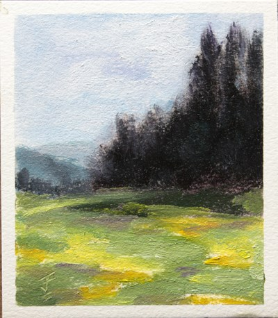 """Colorado Meadow"" original fine art by Jane Frederick"