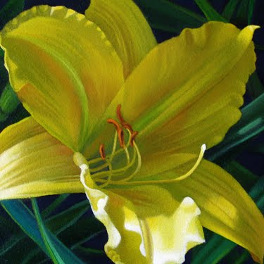 """Daylily 4x4"" original fine art by M Collier"
