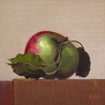 """""""Hand-picked Red and Green Apple with a Light Background"""" original fine art by Abbey Ryan"""