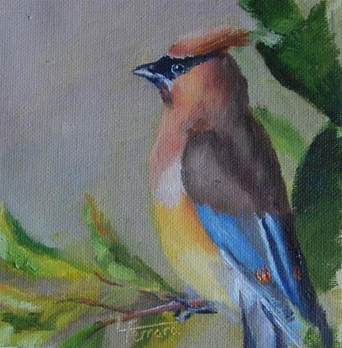 """Cedar Waxwing"" original fine art by Lina Ferrara"