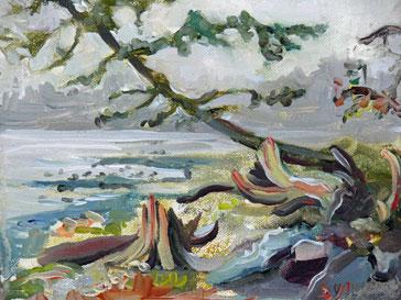 """Mount Doug Park"" original fine art by Darlene Young"