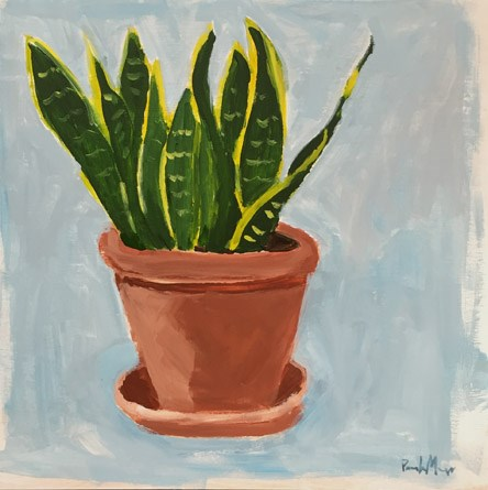 """Snake Plant"" original fine art by Pamela Munger"