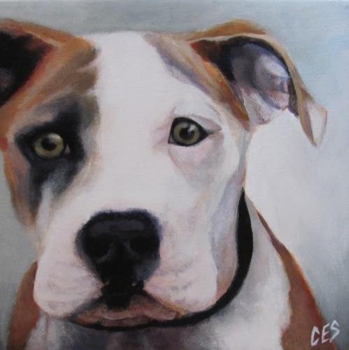 """Pitbull"" original fine art by ~ces~ Christine E. S. Code"