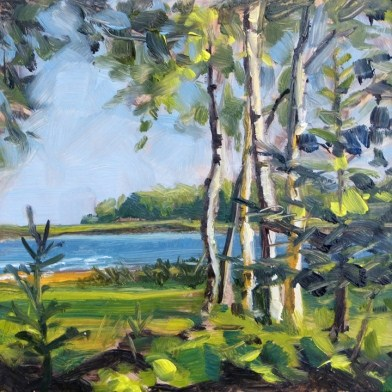 """Oil painting of Birch Trees"" original fine art by Deb Anderson"