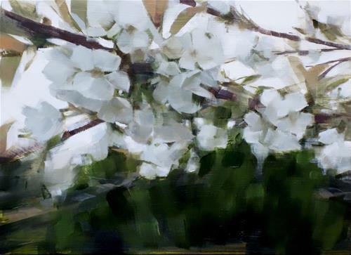 """Pendula Blossoms, Brooklyn Botanic Garden (no.108)"" original fine art by Michael William"