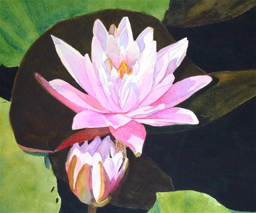 """Waterlily"" original fine art by Vikki Bouffard"