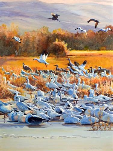 """Original Bird Wildlife Landscape Painting Sunrise Burst at Bosque by Colorado Artist Nancee Jean B"" original fine art by Nancee Busse"