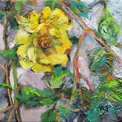"""Yellow Rose"" original fine art by Robin Peterson"