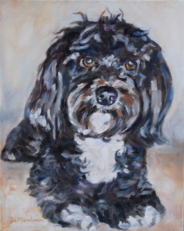 """Jack"" original fine art by Carol DeMumbrum"