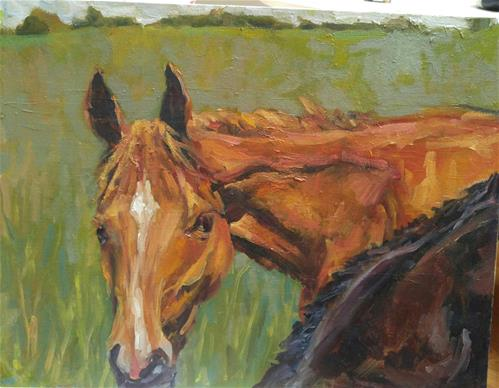 """Graze Interupted"" original fine art by angela scully"