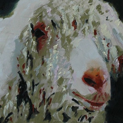 """SHEEP"" original fine art by Linda Popple"