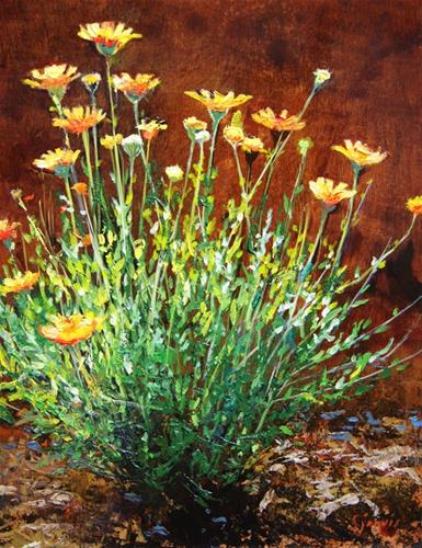 """Rock Daisies"" original fine art by Susan N Jarvis"