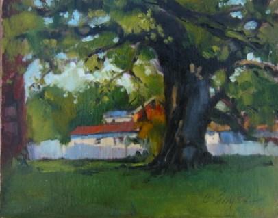 Shade Tree original fine art by Connie Snipes