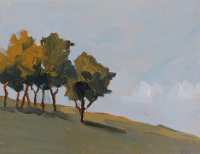 """Trees in Light"" original fine art by Pamela Munger"