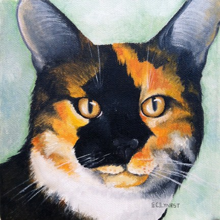 """Kalico Kitty"" original fine art by Elaine Lynest"