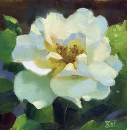 """White rose"" original fine art by Kathy Weber"