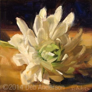 """Oil Painting: White Mum"" original fine art by Deb Anderson"