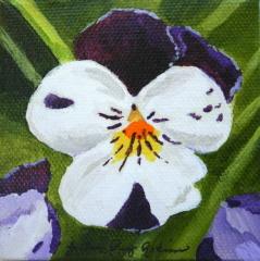 """Such a Pansey"" original fine art by JoAnne Perez Robinson"