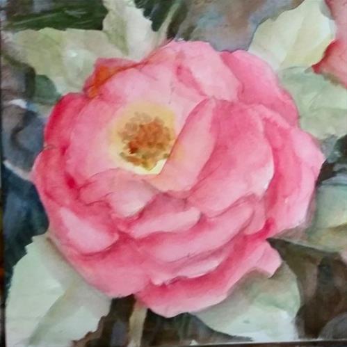 """Blooming beauty"" original fine art by Wendy Starita"