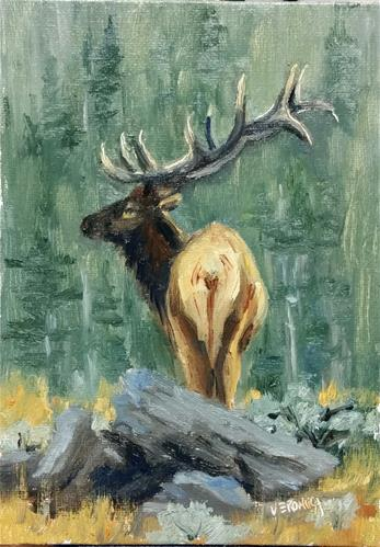 """Over the hill-elk study"" original fine art by Veronica Brown"