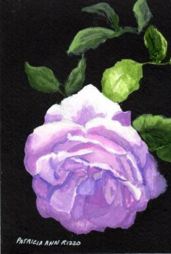 """Lavender Rose at Sunrise"" original fine art by Patricia Ann Rizzo"