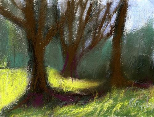 """Afternoon Tree Shadows"" original fine art by Donna Crosby"